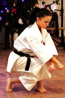 Sexy Karate Ladies 34
