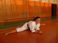 Sexy Karate Ladies 35