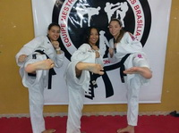 Sexy Karate Ladies 66