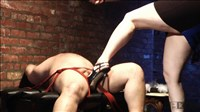ball busting serie1 338